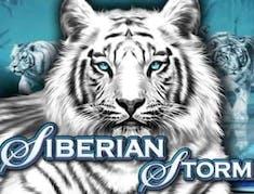 Siberian Storm logo