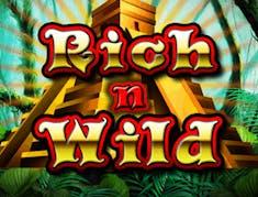 Rich n Wild logo