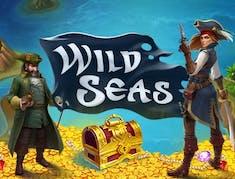 Wild Seas logo