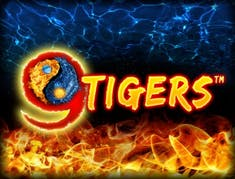 9 Tigers™ logo