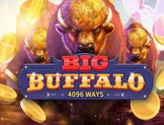 Big Buffalo logo