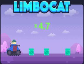 limbo cat