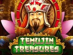 Temujin Treasures logo
