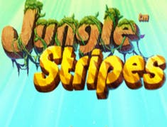 Jungle Stripes logo