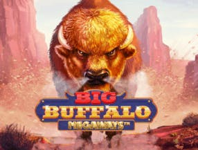 Big Buffalo Megaways