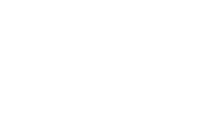 Peter and Sons logo