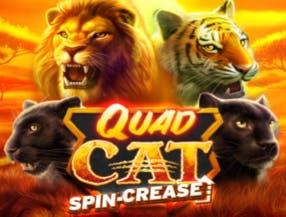 Quad Cat